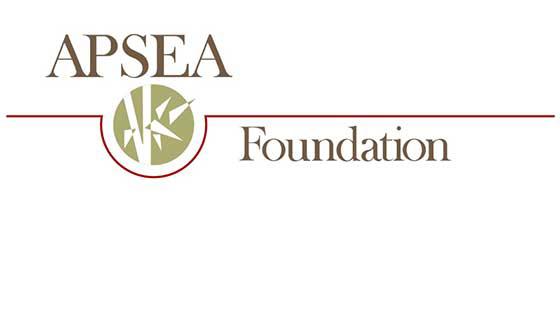 bang-asian-pacific-islander-scholarship-fund